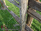 Build Split Rails Fence DIY Ideas